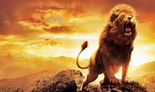 narnia_lion_aslan-wide-350x210